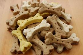 Hundekekse Junior - Mix ab 500 g