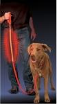 Nite Ize LED Leucht Hundeleine 1,50 m rot