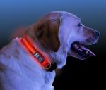Nite Ize LED Leucht Hundehalsband 46 cm - 69 cm rot