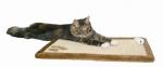 Katzen Kratzmatte